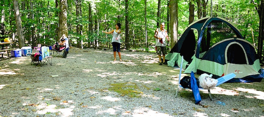 Camping Nj Campground